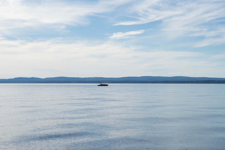 Depuis le bateau pour observer les baleines, Les Bergeronnes