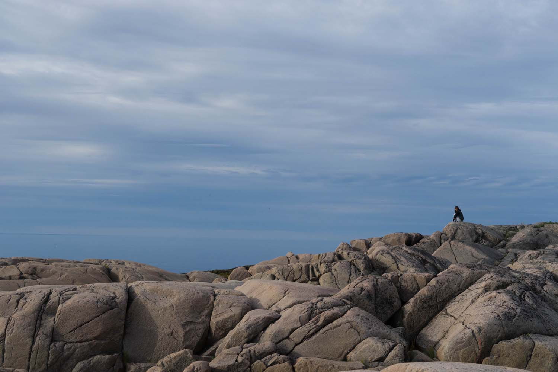 Observation des baleines aux Bergeronnes, Camping Paradis Marin