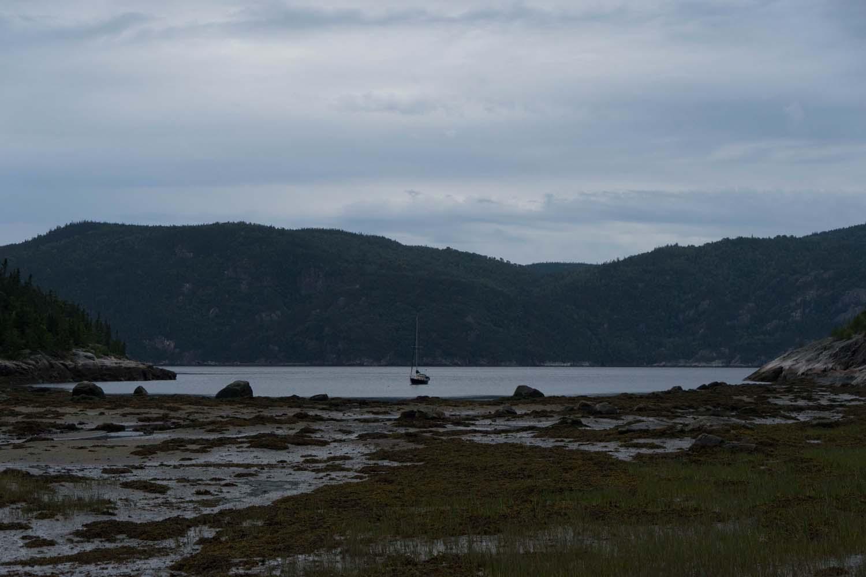 Observation des baleines aux Bergeronnes, Côté Hublot