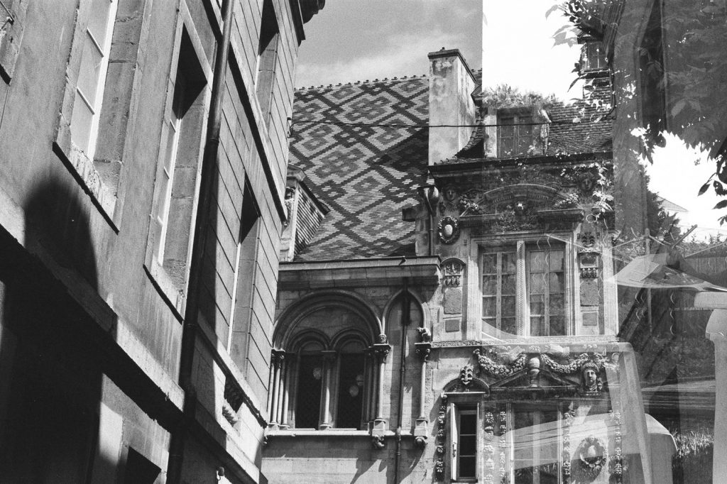 Les rues de Dijon, les toits de Bourgogne, France, Europe