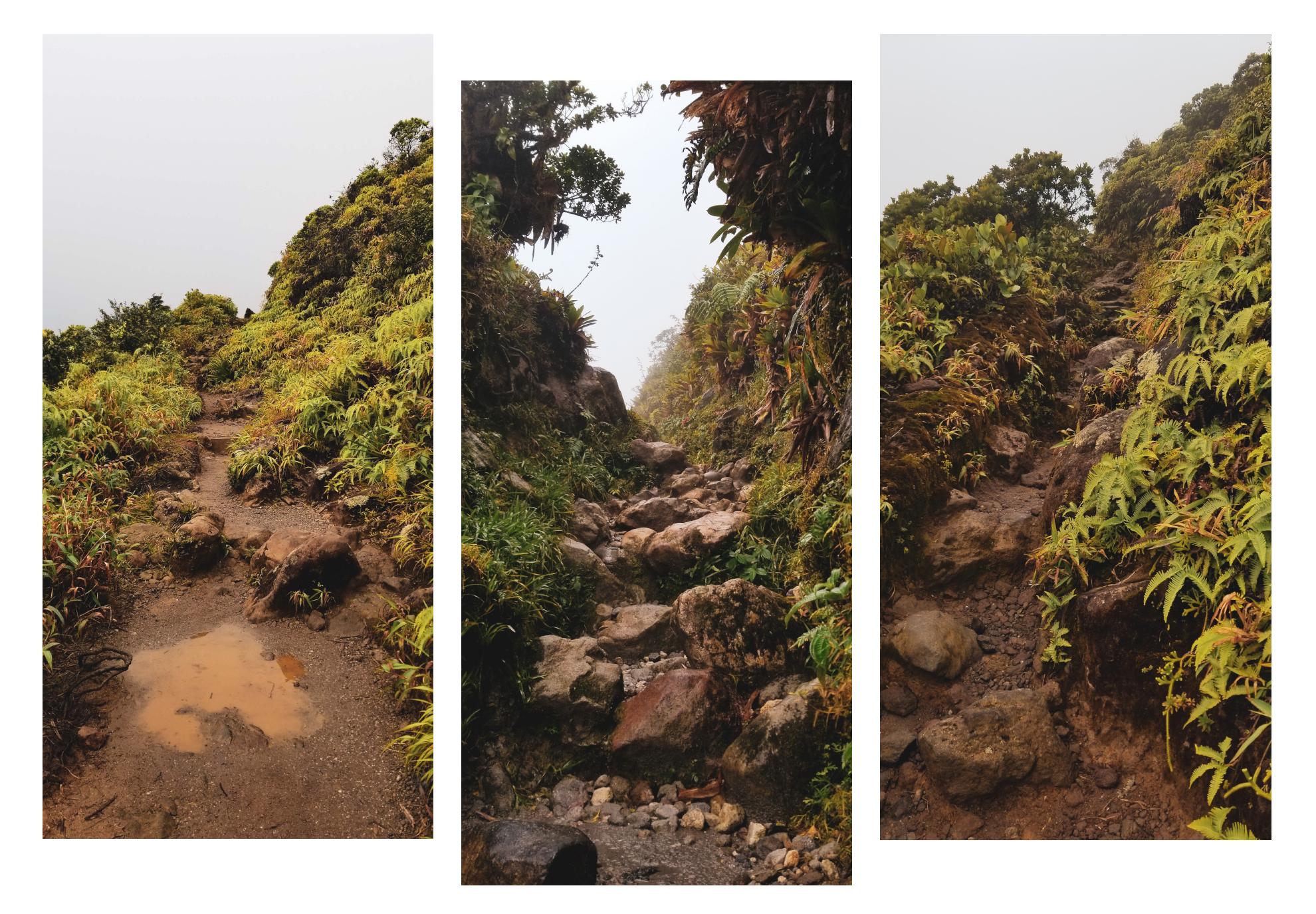 Sur les chemins de la Soufrière en Guadeloupe, par Côté Hublot