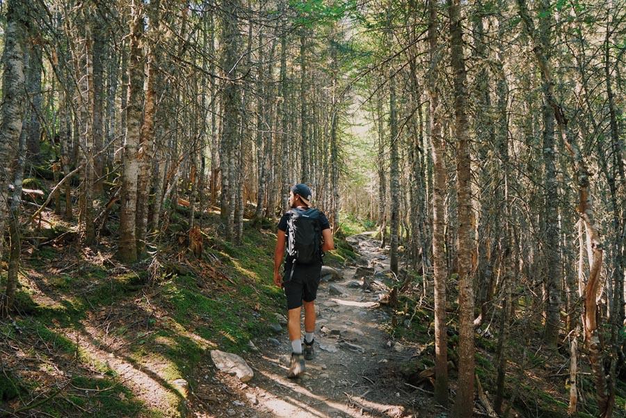 Sur les sentiers du Mont Albert, au coeur du Parc National de la Gaspésie, par Côté Hublot
