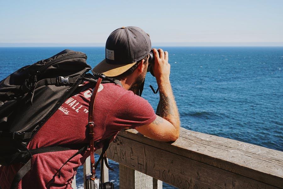 Observation de baleines au Bout du Monde, au Cap Gaspé, par Côté Hublot
