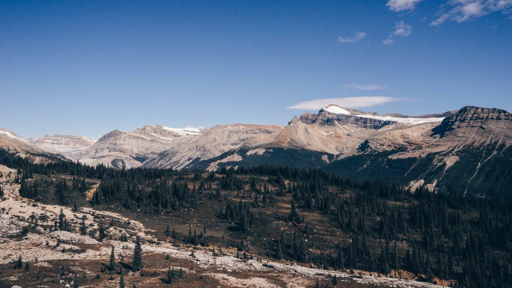 La vue des sommets et de la forêt depuis la Icelinde Trail, dans le parc Yoho, par Côté Hublot